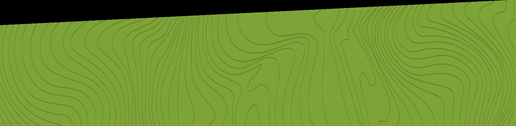 Fond vert avec des lignes